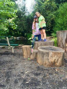 Two Children Standing On Tree Stump