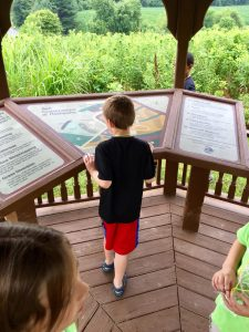 Boy Seeing Route Map
