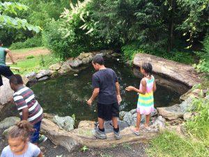 Children Playing Around Pond