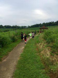Children Walking In Nature Center