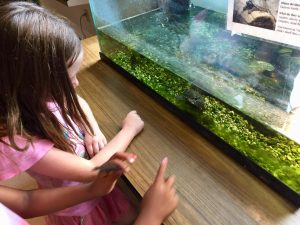 Baby Girl Looking at a Water Tank